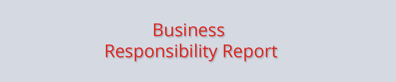 business-responsibility-report.jpg