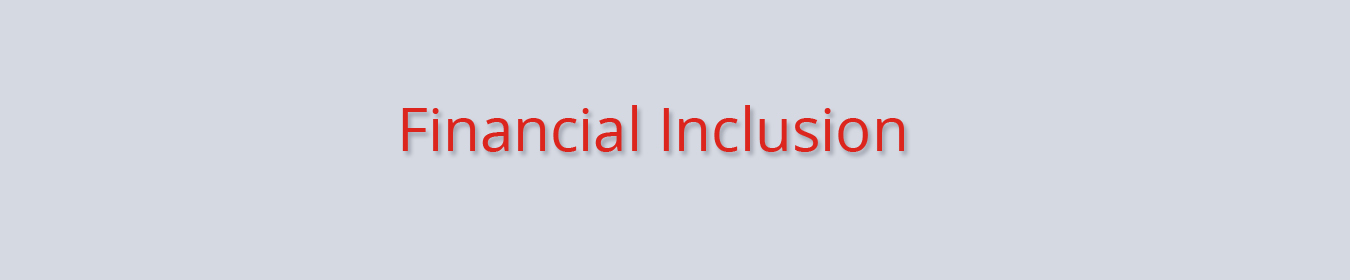 Financial Inclusion Schemes LV Bank