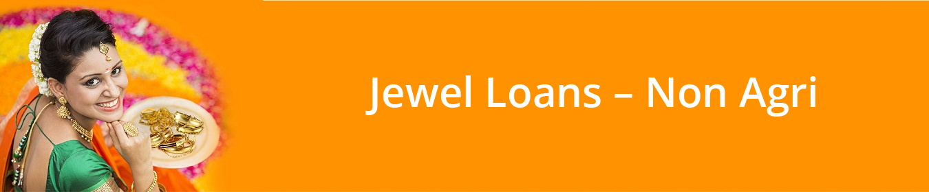 Jewel Loans Non Agri Gold Jewellery